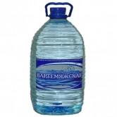 """Артезианская питьевая вода """"Вартемяжская"""" 6 литров."""